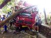 Akibat Ngantuk Pengemudi Truk Tangki Pertamina Tabrak Pohon